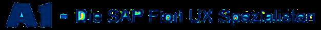 SAP Fiori UX Beratung